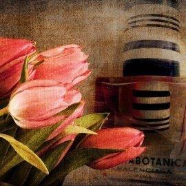 Florabotanica von Balenciaga