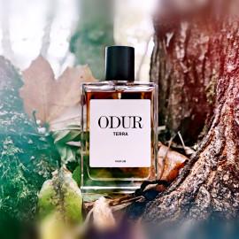 Terra by Odur
