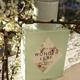 Wonder Leaf von Juniper Lane