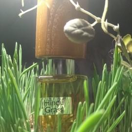 Hindu Grass (Extrait de Parfum) by Nasomatto