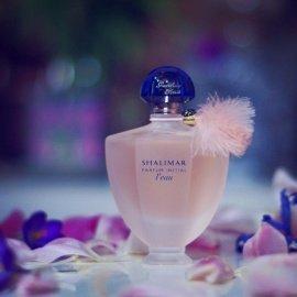Coco Mademoiselle (Eau de Parfum) - Chanel