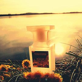 Eau de Soleil Blanc von Tom Ford