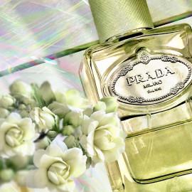 Infusion d'Iris (Eau de Parfum) (2007) - Prada