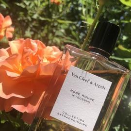Collection Extraordinaire - Rose Rouge von Van Cleef & Arpels