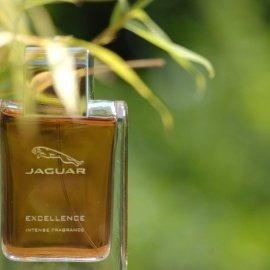 Excellence Intense by Jaguar
