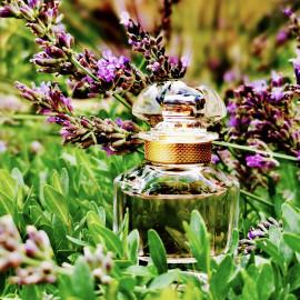 Mon Guerlain (Eau de Parfum) by Guerlain