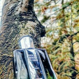 Pour Un Homme de Caron / L'Impact de Pour Un Homme (Parfum) by Caron