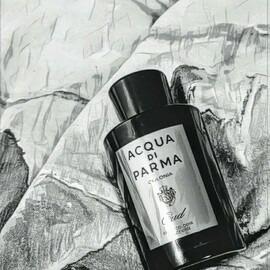 Colonia Oud / Colonia Intensa Oud (Eau de Cologne Concentrée) - Acqua di Parma