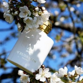 Trussardi Donna (2011) (Eau de Parfum) - Trussardi