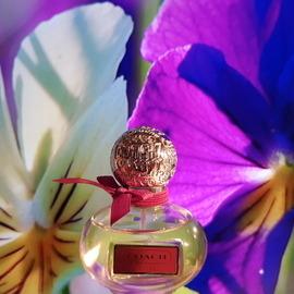 Poppy Flower von Coach