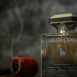 Arabi Cana by Kolmaz