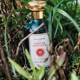 Hortus Sanitatis von Gucci