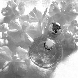 Cašmir (Eau de Parfum) - Chopard