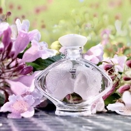 Tendre Kiss by Lalique