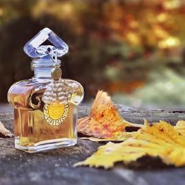 .. Es gibt eine Stille des Herbstes bis in die Farben hinein ..... (H.v. Hofmannsthal) .....