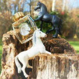 Lalique pour Homme Equus (Eau de Parfum) von Lalique