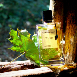 Collection Extraordinaire - Bois d'Iris by Van Cleef & Arpels