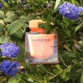 Narciso (Eau de Parfum Ambrée) von Narciso Rodriguez