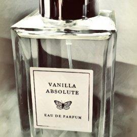 Private Collection - Vanilla Absolute von Primark