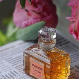 Bellodgia (Parfum) von Caron