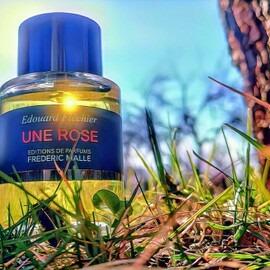 Une Rose - Editions de Parfums Frédéric Malle