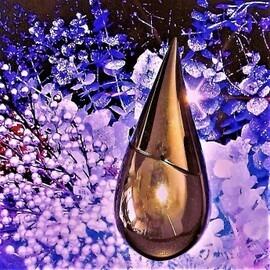 Silver Rain (Eau de Parfum) von La Prairie