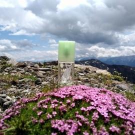 Green Tea (Eau Parfumée) von Elizabeth Arden