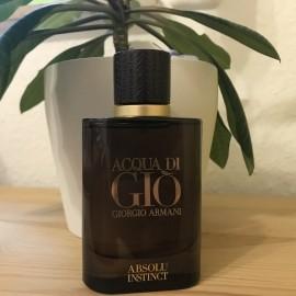Acqua di Giò Absolu Instinct by Giorgio Armani