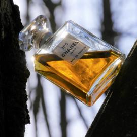 N°5 (Eau de Parfum) - Chanel