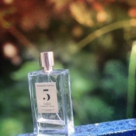 5 - Floral, Amber, Sensual Musk - Rosendo Mateu - Olfactive Expressions