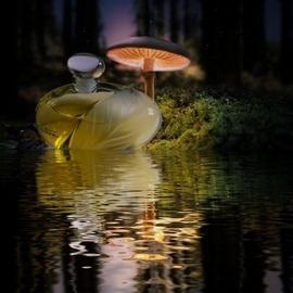 Nature (Eau de Parfum) von Yves Rocher