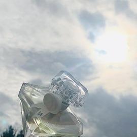 La Nuit Trésor Musc Diamant von Lancôme