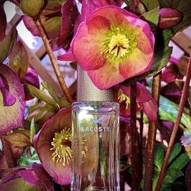 Pour Femme (Eau de Parfum) by Lacoste