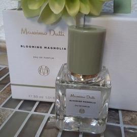 Blooming Magnolia von Massimo Dutti