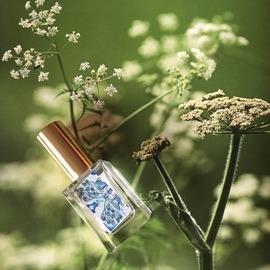 Feels Like Heaven (Extrait de Parfum) by Heymountain Cosmetics