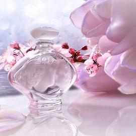 .. der Kuss des Frühlings ....  - (Mini)
