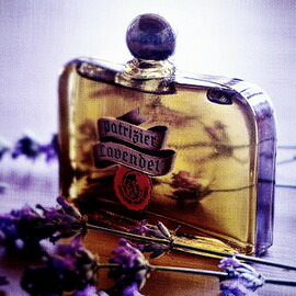 Patrizier Lavendel by Jünger & Gebhardt / Patrizier Haus Köln