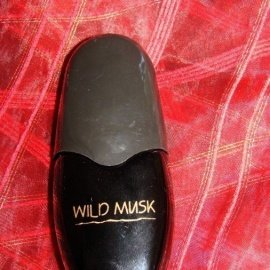 Wild Musk by Coty