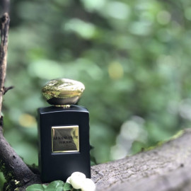 Armani Privé - Cuir Noir von Giorgio Armani