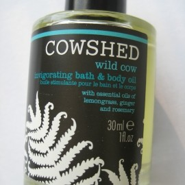 Wild Cow by Cowshed