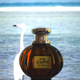 Oud Malezee by Ard Al Zaafaran / ارض الزعفران التجارية