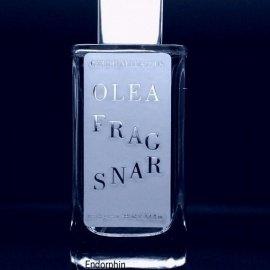 Olea Fragrans by Cerchi Nell'Acqua
