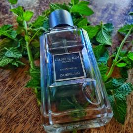 Guerlain Homme (Eau de Parfum) by Guerlain